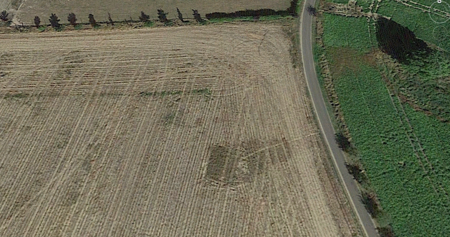 Google Earth 2016, after harvest