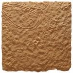 "23°34'0.73""S   15°50'57.70""E  tracks, eastern namib dune field"